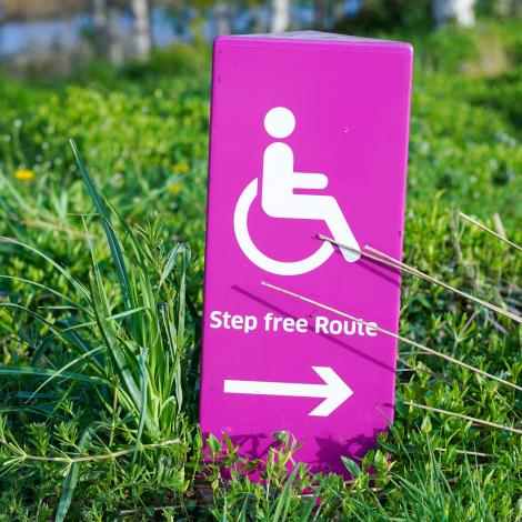 image of a bright pink disability sign in a patch of grass